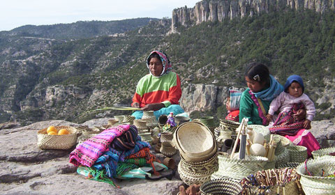 Who Are The Tarahumara?