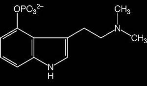 Alkaloid Groups – A Brief Overview