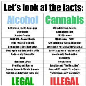 Fact Over Fiction: Marijuana Safer Than Alcohol?